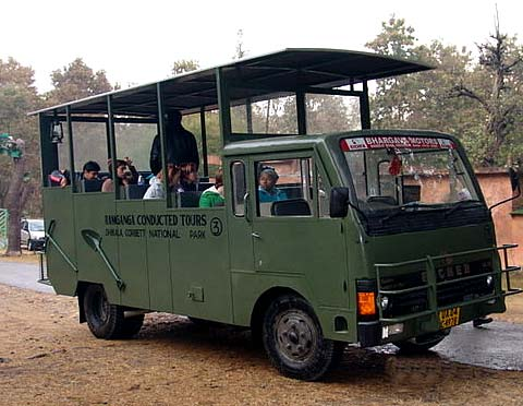 Dhikala Canter Safari
