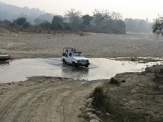 PHOTO GALLERY OF CORBETT NATIONAL PARK